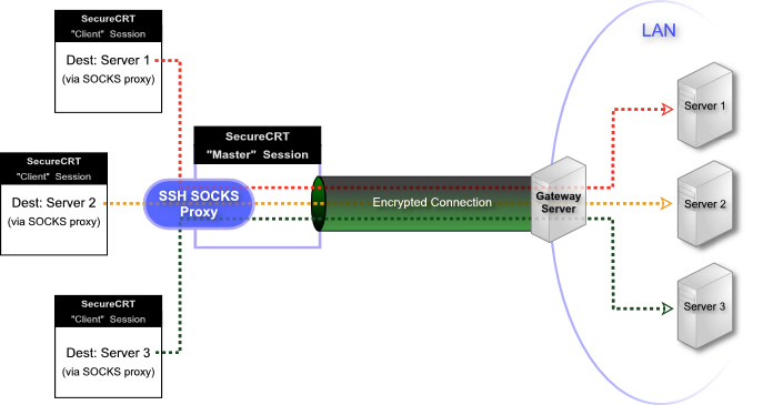 Tips - Using A SecureCRT Secure Shell Connection As A SOCKS Proxy